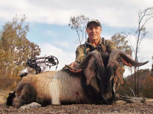 naptyme archery smackdown 300 carbon arrow shaft goat